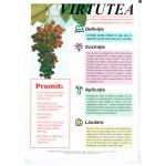 Manualul Virtutea